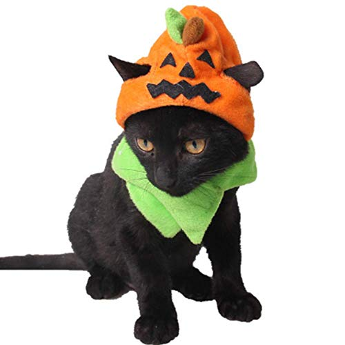 ANIAC Pet Halloween veclro Kürbis Hat Durchzieh Katzen orange