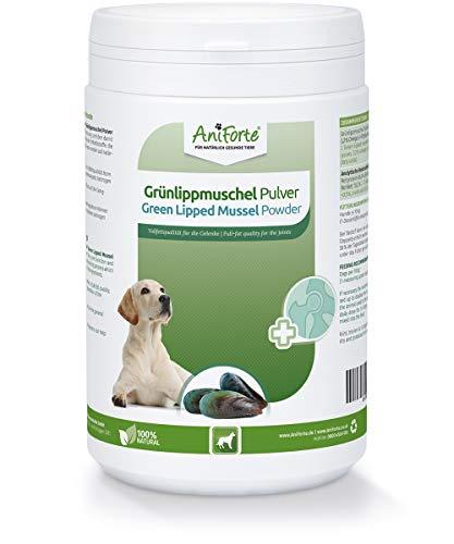 AniForte Grünlippmuschelpulver für Hunde 500g - Natürliches Grünlippmuschel Pulver in Vollfettqualität 10,2%, Glycosaminoglycane 3,3%, Grünlippmuschelextrakt unterstützt Gelenkfunktionen