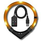 LEUCHTIE® Leuchthalsband Premium Easy Charge orange Größe 52,5 I LED Halsband für Hunde I USB aufladbar I konstante Leuchtkraft I wasserdicht I extrem hell