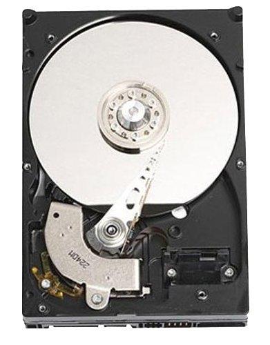 DELL 1TB SATA 1000GB SATA Interne Festplatte - Interne Festplatten (1000 GB, SATA, 7200 RPM, 3.5 Zoll, Festplatte, 3 Gbit/s) (Dell-computer 3847)