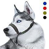 RockPet Gepolsterter Hundehalfter aus Leder - Hundehalsband-Halfter der Ziehen verhindert, Einstellbar, Maulkorb Hunde (L, Schwarz)