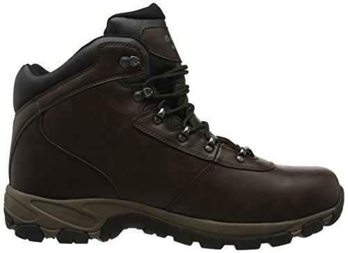 Hi-tec Altitude V I, Herren Trekking- & Wanderschuhe Braun (Dark Chocolate/dark Taupe/black)