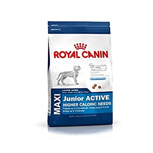 royal canin hundefutter maxi junior active 15 kg 1er pack 1 x 15 kg haustier. Black Bedroom Furniture Sets. Home Design Ideas
