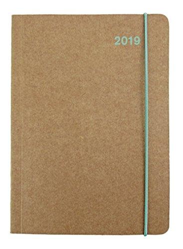 Buchkalender Eis 2019 - Midi Flexi Diary ColourLine ICE, Taschenkalender - 12 x 17 cm