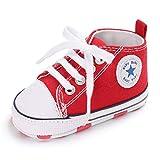 Auxma Zapatos Para Bebé La Zapatilla de Deporte Antideslizante del Zapato de Lona de La Zapatilla de Deporte Para 3-6 6-12 12-18 M (12-18 M, Rojo)