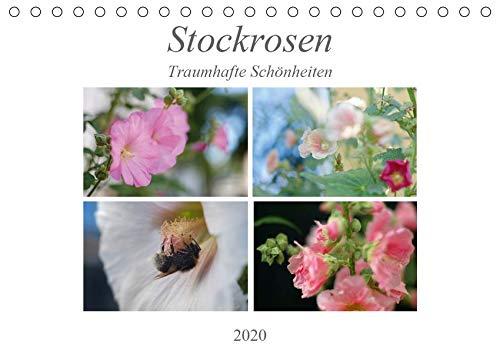 Stockrosen - Traumhafte Schönheiten (Tischkalender 2020 DIN A5 quer): Stockrosen in voller Pracht in jahreszeitlicher Lichtstimmung (Monatskalender, 14 Seiten ) (CALVENDO Natur)