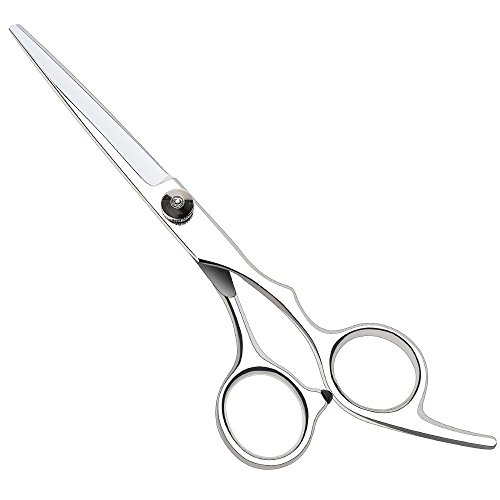 "Professional Hairdressing Scissors,Hair Cutting Scissors Shears for Barber Salon - 6"" Overall Length with Fine Adjustment Tension Screw 100% Stainless Steel by Ouway Test"