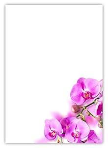 Motiv Briefpapier (Blumen-5029, DIN A4, 25 Blatt
