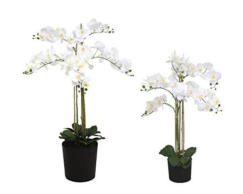 riesige künstliche Orchidee mit weißen Blüten