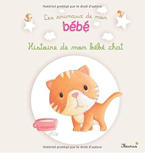 Histoire de mon bébé chat