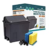 All Pond Solutions Koi/Goldfish Pond Filter Box, Small, 6000 Litre