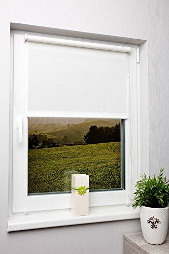 Rollo lichtdurchlässig Weiß ohne Bohren verschiedene Größen Klemmfix ohne Bohren Fensterrollo für kleine und große Fenster und Türen Sichtschutzrollo Seitenzugrollo Klemmrollo 120x150 cm