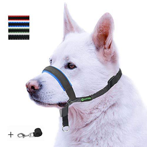 ILEPARK Correa de Adiestramiento para Perros de Piel Acolchado - Confortable al Tacto, el Collar para Perros Frena los Tirones y Deja de Tirar, Ajustable, Herramienta de Entrenamiento (S,Azul)