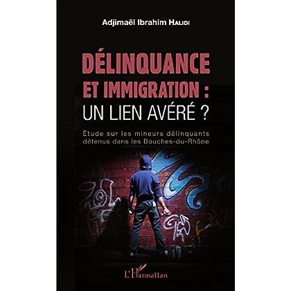 Délinquance et immigration : un lien avéré ?: Étude sur les mineurs délinquants détenus dans les Bouches-du-Rhône