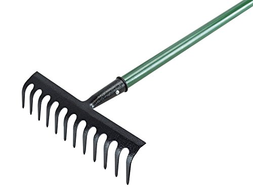 Faithfull Tools FAIESSGRE Essentials Garden Rake, Blue, 29.5 x 132.5 x 8.5 cm