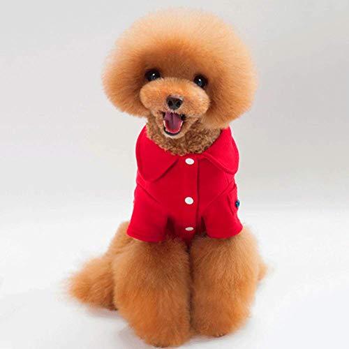 CXXX Haustierkleidung, Haustierjacke (Ein Von Einer Art Pet Kostüm)