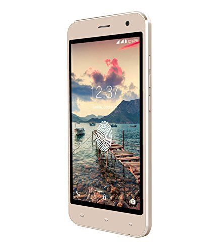 Intex Cloud Scan FP (1GB RAM, 8GB)