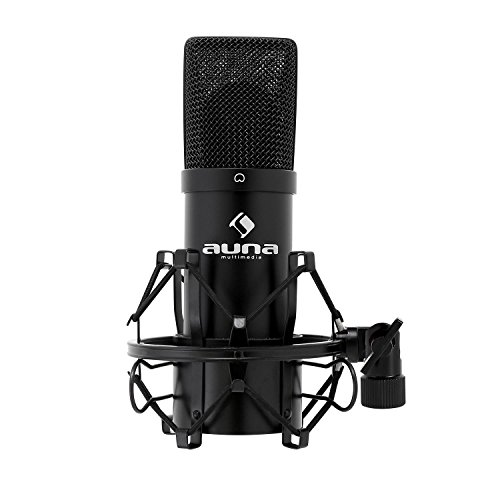 Auna MIC-900B USB Test