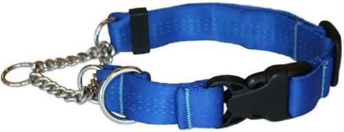 Canine Equipment Technika 1-inch Quick Release Martingale Dog Collar, X-Large, Blue