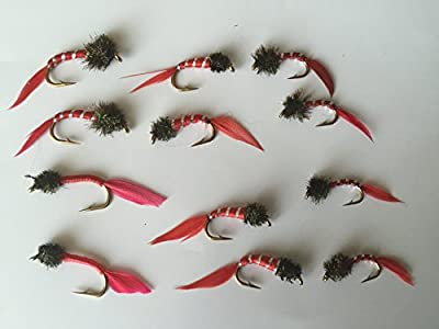Fly Fishing Bloodworm NYMPHS Blood worm Set sizes 10-14 Twelve flies PACK#3 by BestCity Tackle