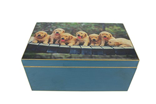 SIGNATURE HOME COLLECTION FC-118-054 Boîte à Motifs Chiens Bleu 34 x 21 x 15 cm