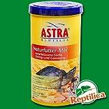 Astra Reptilien-Futter Naturfutter-Mix, 1er Pack (1 x 1000 ml)