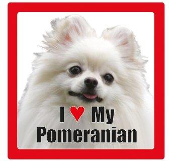 I love my dog Keramik Fotografien quadratisch Untersetzer mit Rasse Name Pomeranian -