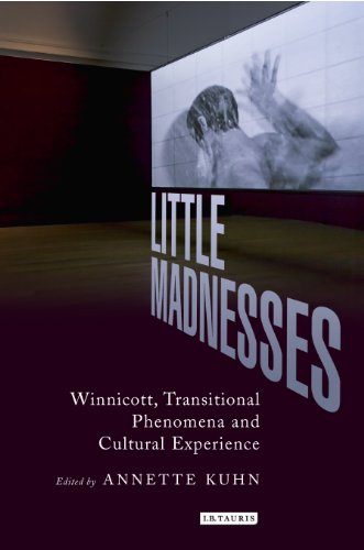 little-madnesses-winnicott-transitional-phenomena-cultural-experience-international-library-of-cultu