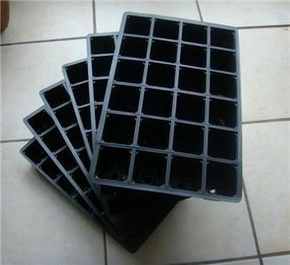 nutleys-vassoi-per-la-semina-a-24-cellette-6-pz