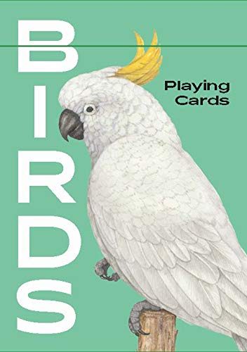 Birds: Playing...