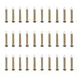rzdeal 50PCS 0,3x 3cm rund Kopf Messing Nägel für Scharniere Boxen Craft Projekte (DIY)