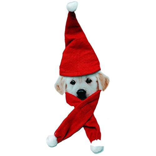 Kostüm Cookie Christmas - Christmas Stuff Weihnachten Santa Hunde Kostüm Mütze und Schal