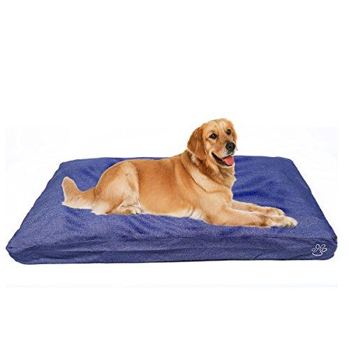 tapis chien indestructible