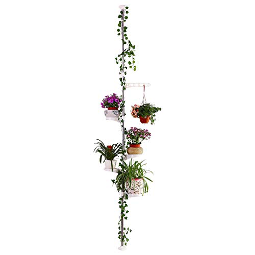 Hershii 5-lagige Pflanzenstange für den Innenbereich, Federspannstab für Ecken, Blumen, Ständer für Blumentöpfe, Teleskop-Boden bis Decke, platzsparend elfenbeinfarben