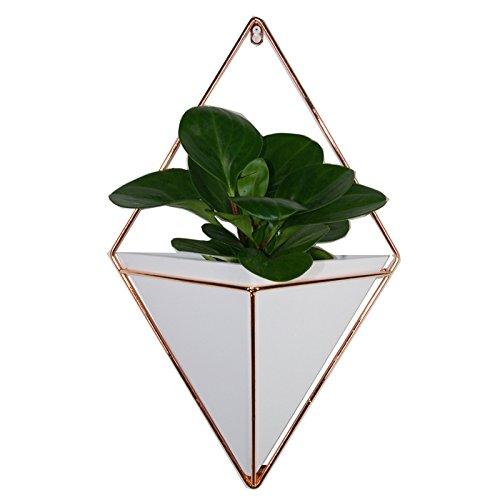 Zreal 2 Stück/Set Terrarium Pflanze Vasen zum Aufhängen, geometrische Wand, Dekoration, Behälter...