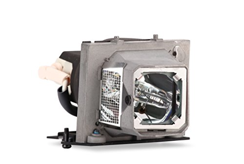 Dell 725-10112 Ersatz Lampe für M210X/M410HD Micro-portable Projektor (165 Watt)