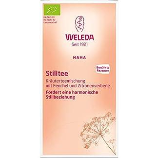 Weleda-Stilltee-Aufgussbeutel-bio-1-x-20-Btl