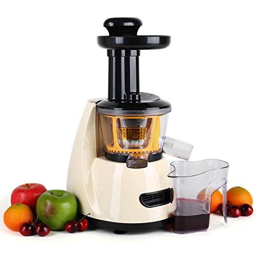 Klarstein Fruitpresso Slow Juicer licuadora vertical (150 W, 70 rpm, 600 ml, separador pulpa, 2 velocidades) -