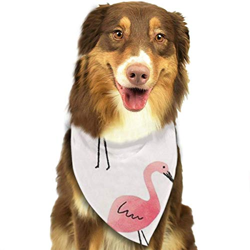 Rghkjlp Flamencos Pet Bandana Washable Reversible Triangle Bibs Scarf - Kerchief for Small/Medium/Large Dogs & Cats (Flamenco Kostüm Muster)