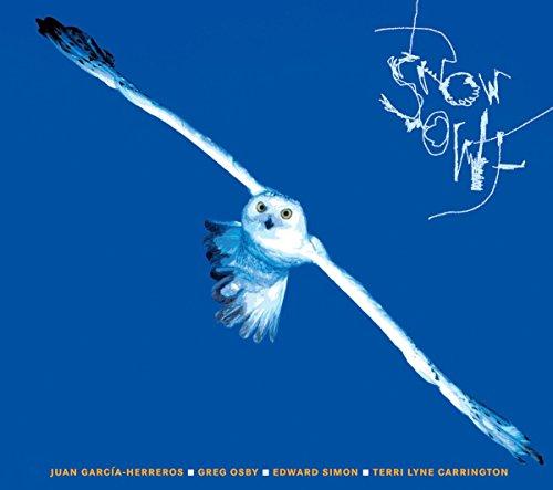 snow-owl-quartet