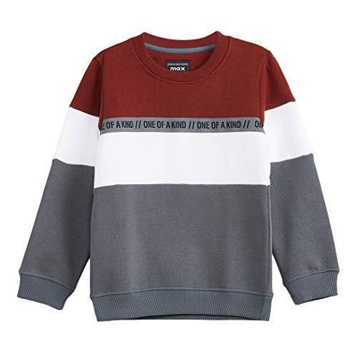Max Boy's Cotton Sweatshirt (W19DSS08_Multi_5-6y)