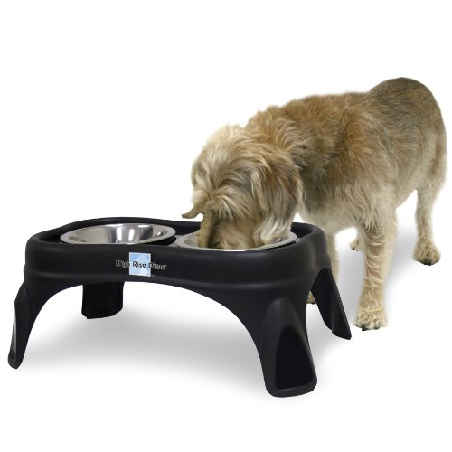 Our Pets erhöhte Knochen Hund Feeder, 20,3cm