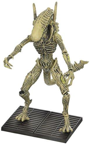 """Aliens OCT158462 - Figura de acción (Escala 1:8, """"Xenomorph Boiler PX) 1"""