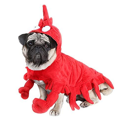 Bulldogge Französische Kostüm Halloween - 7°MR Hundekleidung Winter Hund Kleidung Halloween Hummer Kostüm für Hunde Pet Overalls Katze Weihnachten Anzug lustige Kleidung für französische Bulldogge Yorkie (Color : 1, Size : XL)