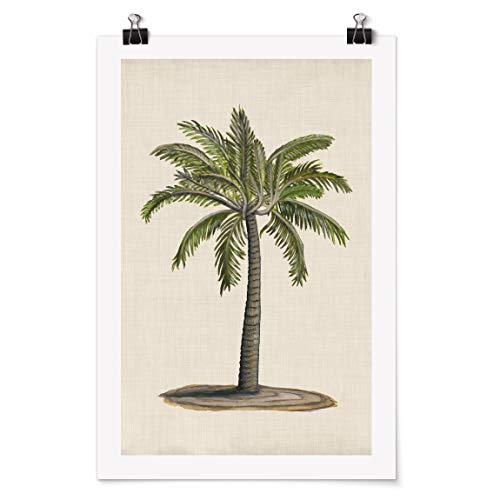 Poster Galerieprint - Britische Palmen I - Selbstklebend seidenmatt 90 x 60cm