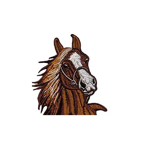 ᐅᐅ】 Pferd Applikation im Vergleich 10 / 2018 - ⭐ TOP 10