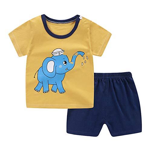 Fairy Baby Kinder Karikatur T-Shirts+Kurze Hose Kleinkind Jungen Mädchen Schlafanzug Kurze Ärmel