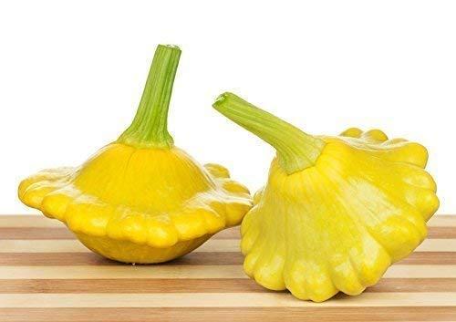 Gelbe Ufo Zucchini Yellow Squash - 20 Samen