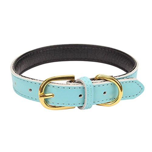 Mcdobexy Klassische weiche gepolsterte Leder Hundehalsband für Katzen Welpen kleine mittelgroße Hunde(LightBlue,S)