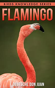 flamingo beautiful pictures interesting facts children book about flamingos birds knowledge. Black Bedroom Furniture Sets. Home Design Ideas
